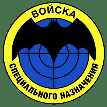 Символика войс специального назначения